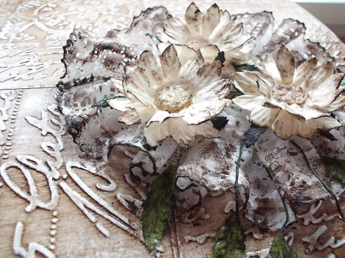 detail květin
